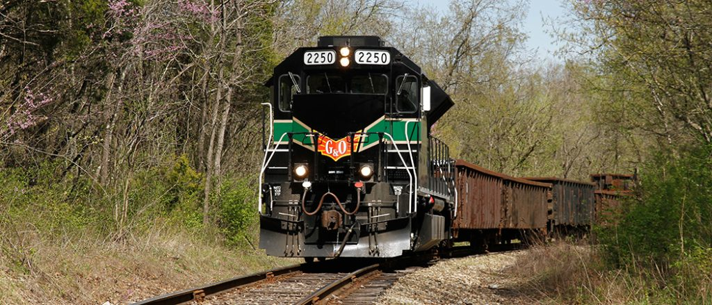 KLW GP38 black and green, pulling cargo cars through the woods. light pink blooms.